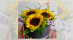 Flower works - Sunnies in a box.jpg