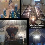 Meticulosa The Event Planner