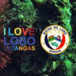 Municipality of Lobo | Anihan Festival