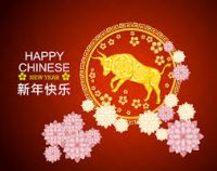 February 12, 2021 - Chinese New Year