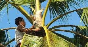 Louie Escalante | Magkakarit | San Juan Batangas