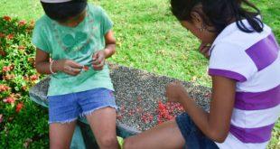 Mga batang naglalaro ng bulaklak ng Santan sa Balete, Batangas